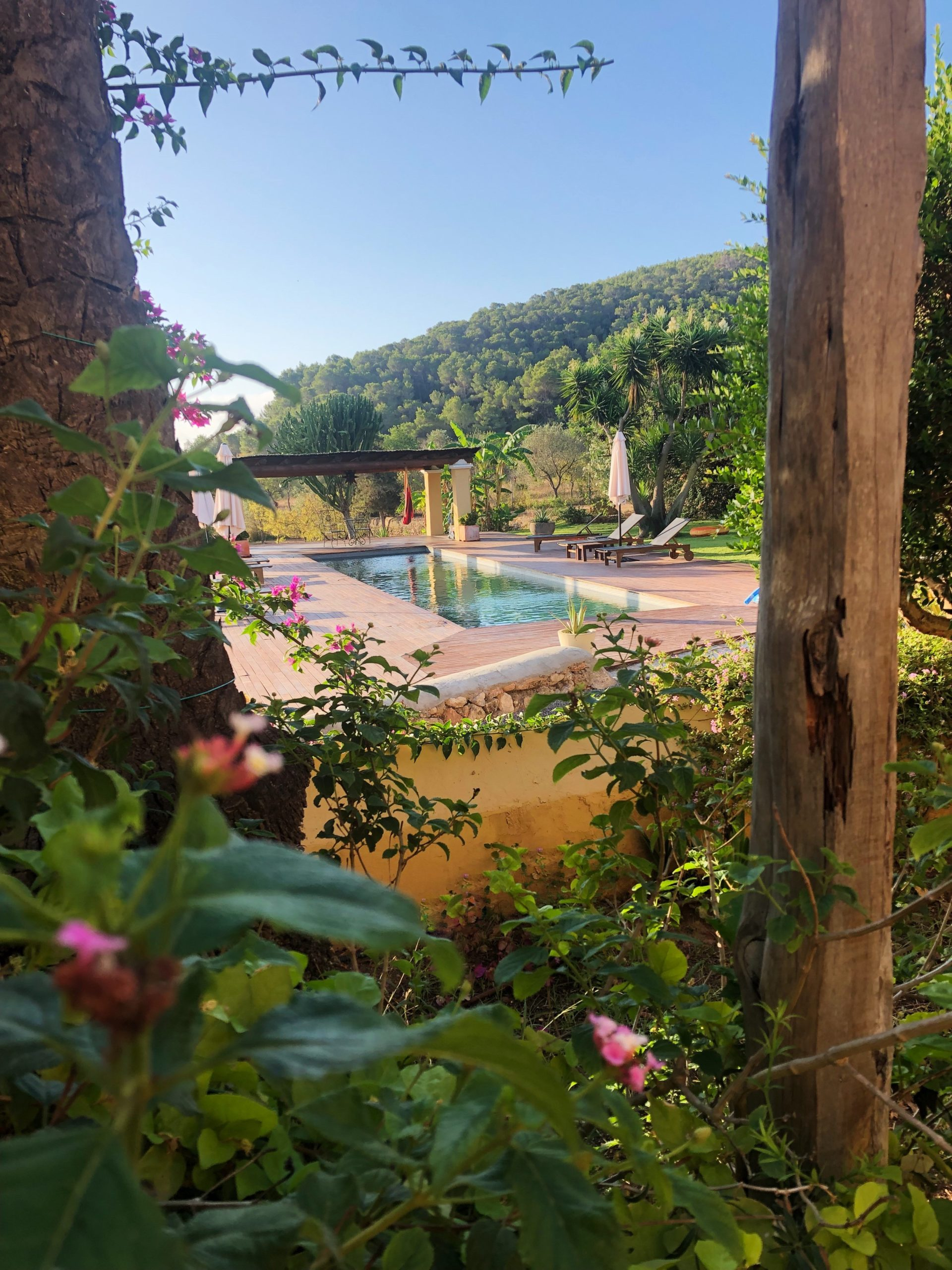 Pool view with flowers